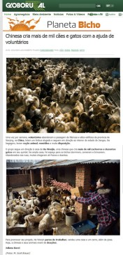 Saving Nanjing's Cats and Dogs on Editora Globo - Planeta Bicho
