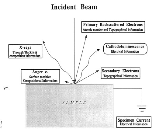 small resolution of electron beam specimen interactions