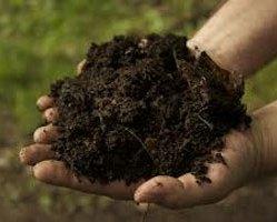 Kompost 18