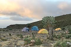 Znaczenie snu obóz