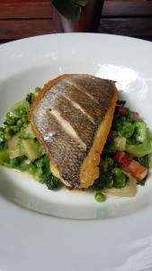 Sea bream with baby gems