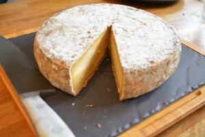 I give you....the BIG cheese! Tomme de Savoie