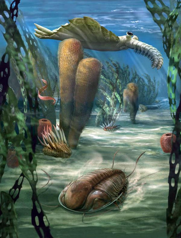 Carr-Cambrian-Sea
