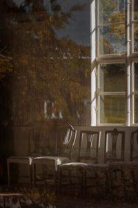 Mirror Forest Series, Margarita Sheremet