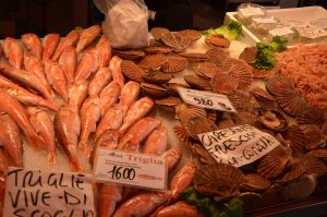 A Variety of Seafood