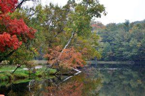 Ludington State Park, Michigan