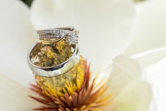 wedding rings place on flower