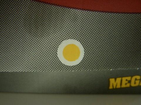 メガトマト画像4