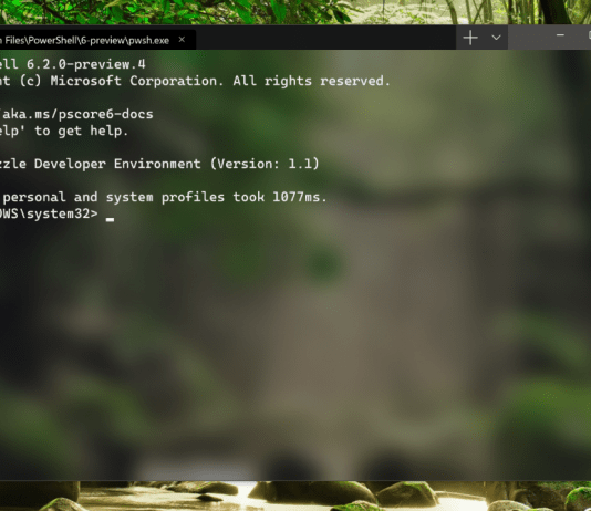 Windows Terminal Screenshot