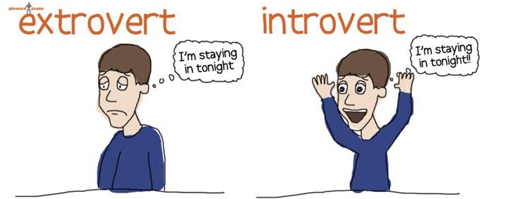 introvert - msqueenro