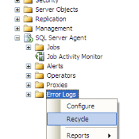 Recycled the SQL Server Agent Error Logs