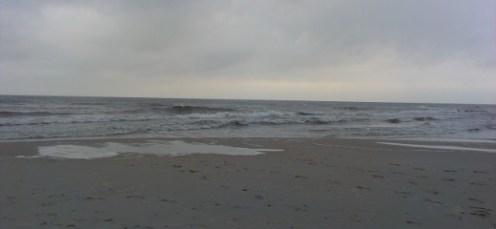 morze2014