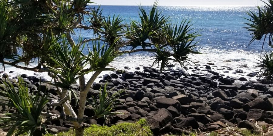 Burleigh Heads has it all! Excellent accommodation options, delicious food, scenic national parks and gorgeous beaches.