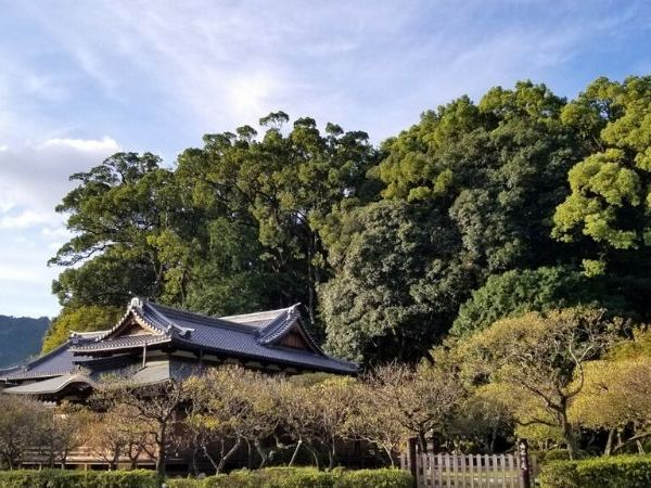 A day trip to Dazaifu from Fukuoka is easy due to the efficient Nishitetsu Train system.
