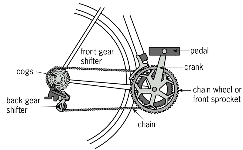 Cycling Basics: Learn How to Shift Bike Gears for All Terrains