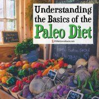 Understanding the Basics of the Paleo Diet