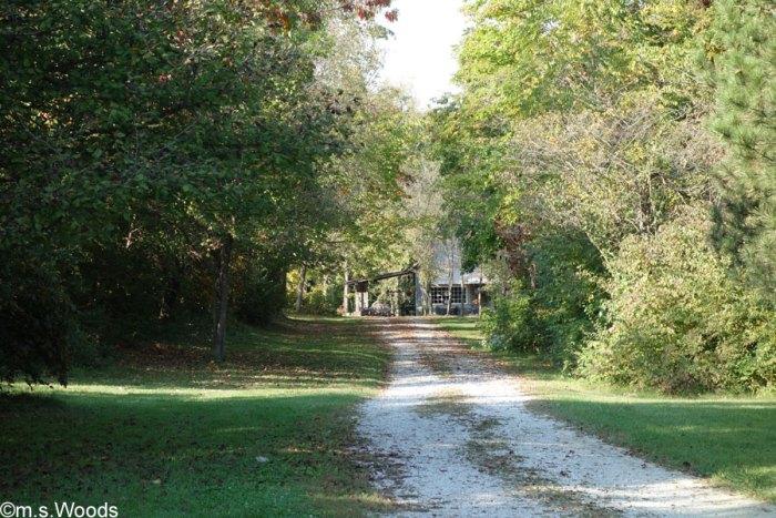 willowfield-lavendar-farm-photo-mooresville