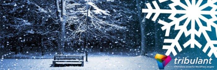 WordPress Sitenizde Kar Yağsın