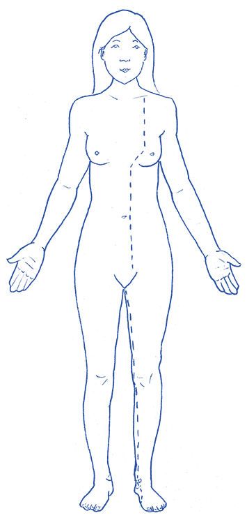 Kidney & Urinary Bladder – Meridian Systems Yoga