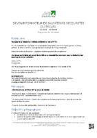 programme_formation_DEVENIR-FORMATEUR-DE-SAUVETEURS-SECOURISTES-DU-TRAVAIL