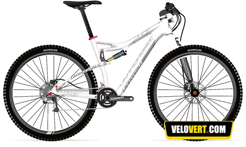 Mountain biking purchasing guide : Cannondale Scalpel 29'er 3