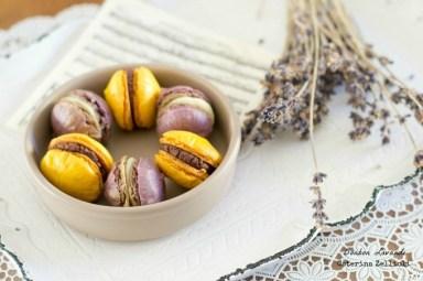 81.Macaron dolci di Caterina