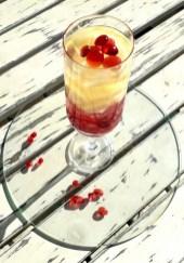 69. Aspic di frutta al Bacardi