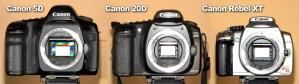مراحل تطور الكروب فريم فى كاميرا (DSLR - NIKON) من 1999 الى 2014