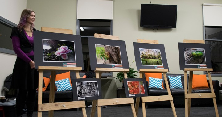 Winning photography from the See Mt Evelyn Photo Contest