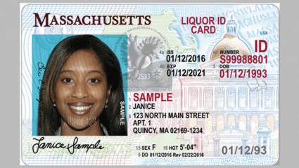 Massachusetts Id And Driver S License