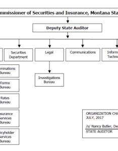 chart of the office state auditor an organizational is attached as following page this rule also administrative rules rh mtrules