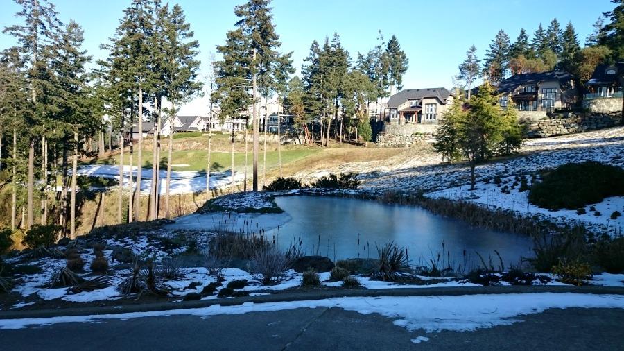 зима на острове Ванкувер