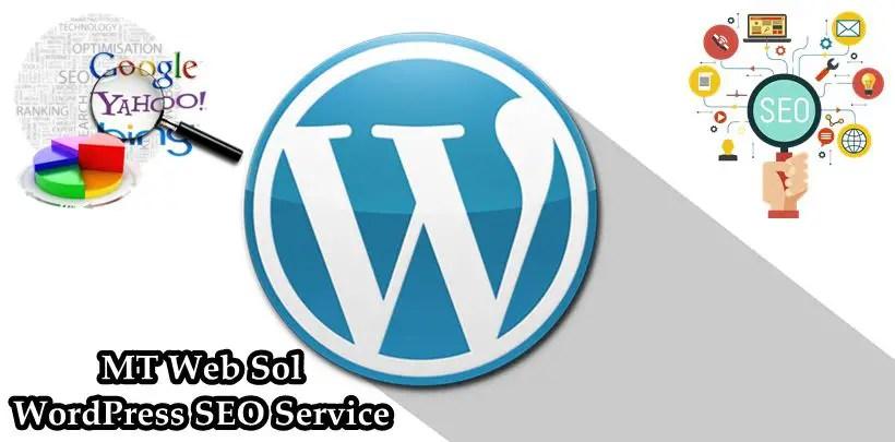 WordPress On Page SEO Service by MT Web Sol