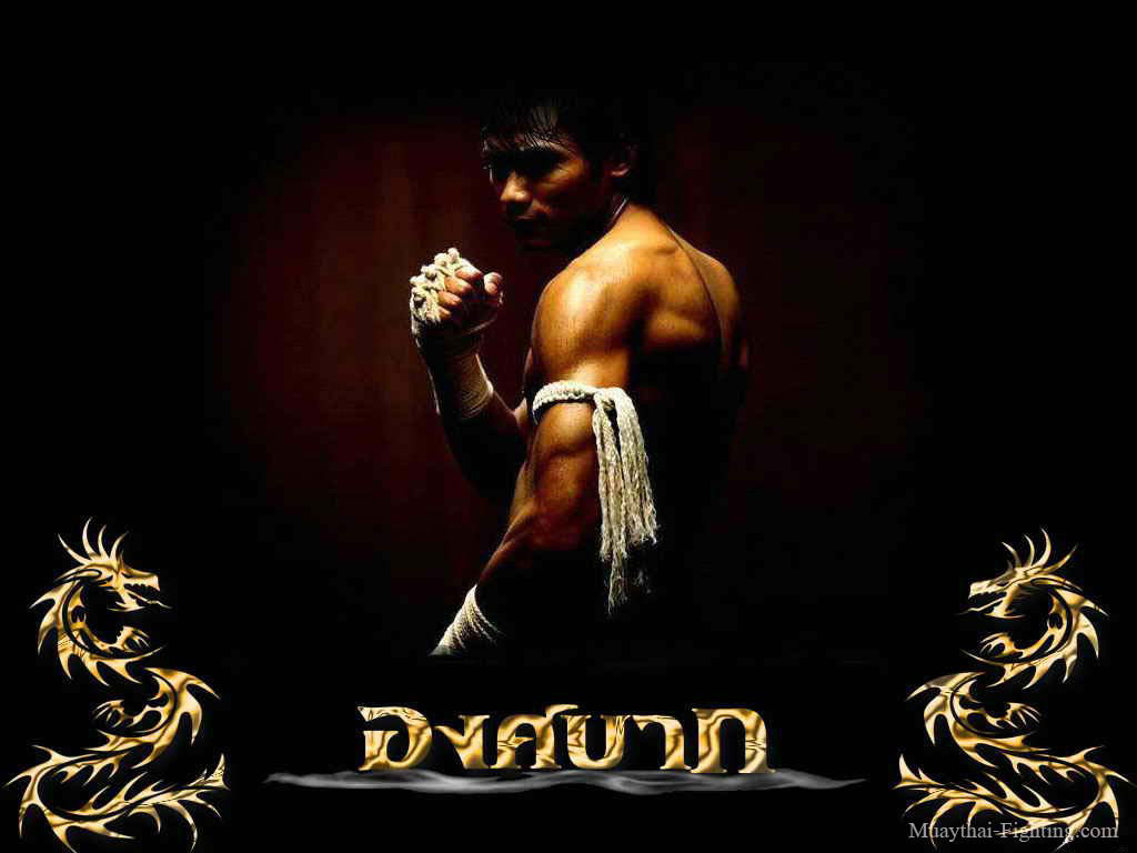 https://i0.wp.com/www.muaythai-fighting.com/images/Muay-Thai-Wallpapers-Tony-Jaa-16.jpg