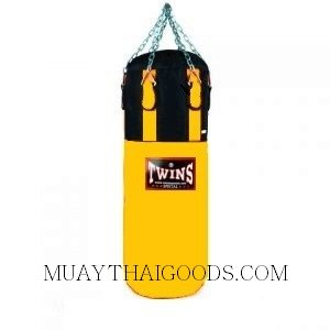twins special punching bag