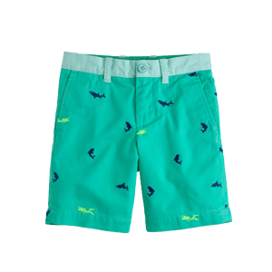 Boy's Elasticated Shorts