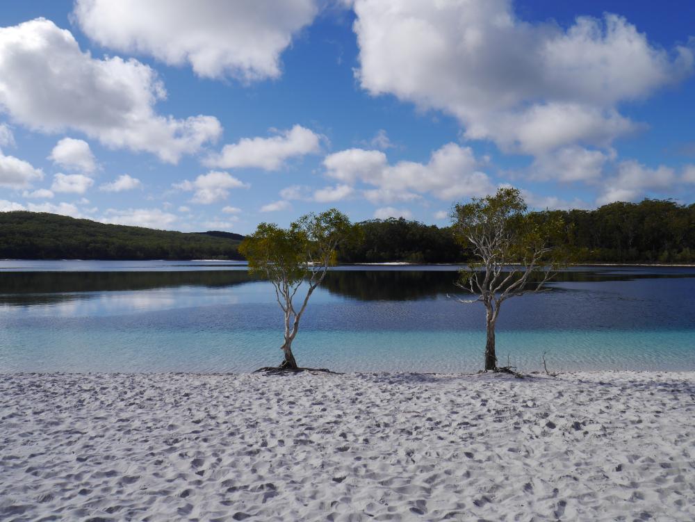 lago mckenzie lake australia