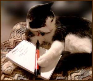 A cat with a pen and a noteboook