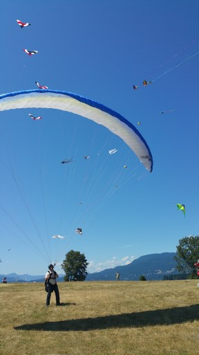 On a sunny day, a paraglider and a bunch of kites are flown at a shoreline park.