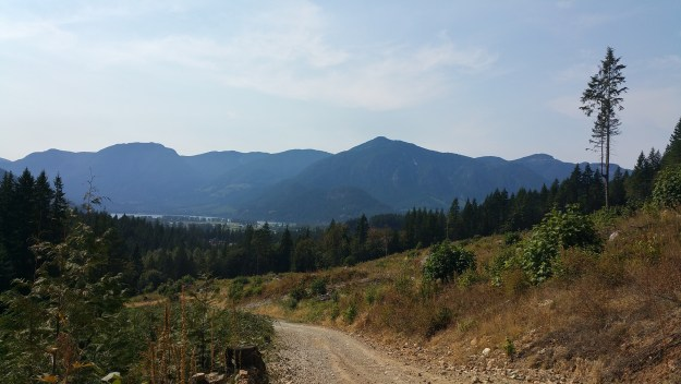 A winding dirt road surrounded by scruffy bushes and with mountains in the distance.