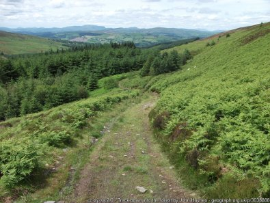 Liberty Hall Walk from Corwen