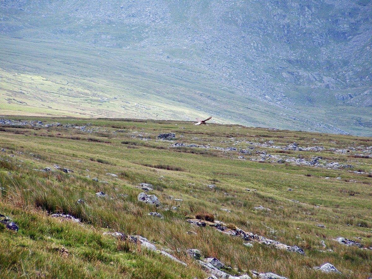Yr Elen and the Cwm Llafar Horseshoe from Gerlan