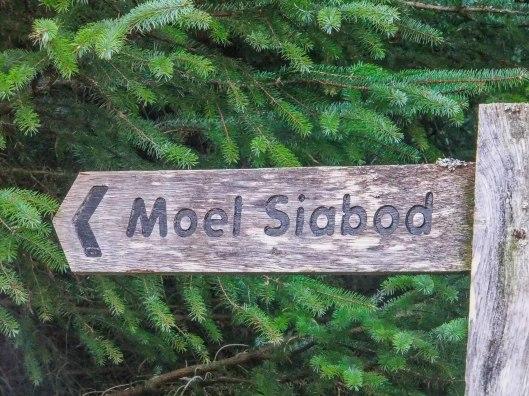 Moel Siabod