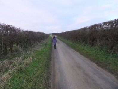 wolds_17_960