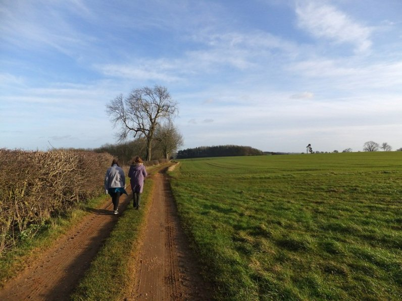 wolds_49_960