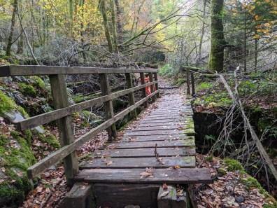 Dangerous footbridge - barriers have been removed