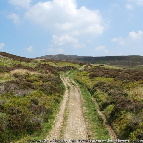 North Berwyn Way