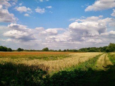 stratford_greenway_18_960