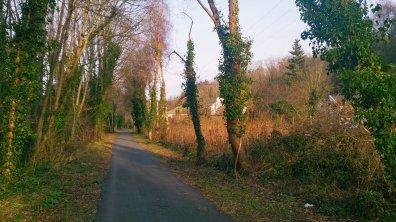 Menai_Bridge_Caernarfon_114