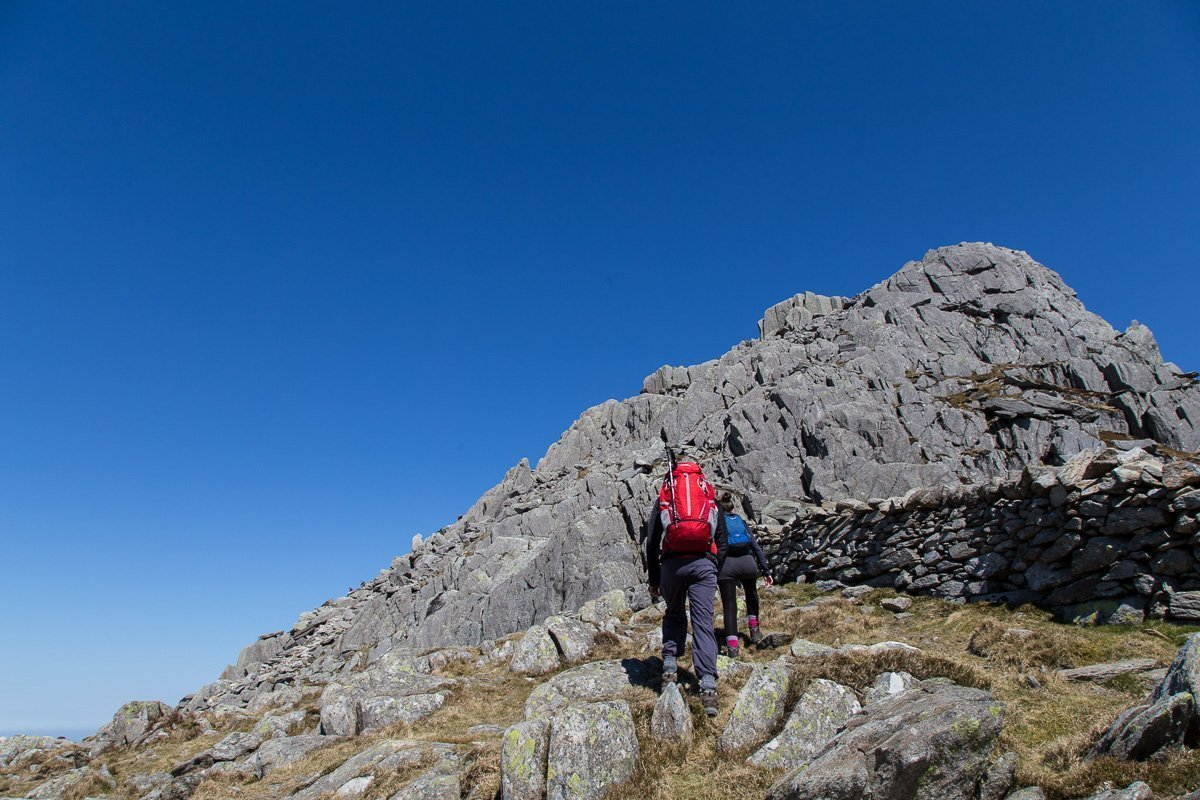 tryfan heather terrace
